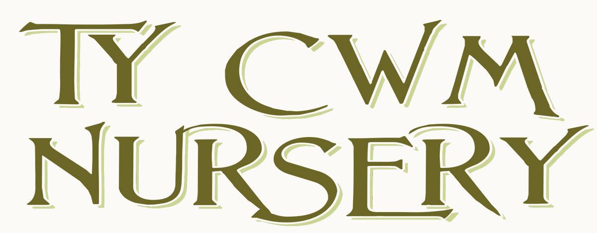 Ty Cwm